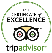 TripAdvisor certificate of excellence 2016 logo - cropped
