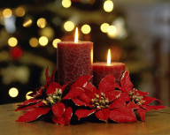 Candle-Christmas-Flower-Wallpapers